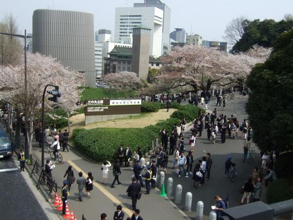 Hồ sơ visa Nhật lưu trú 3 tháng